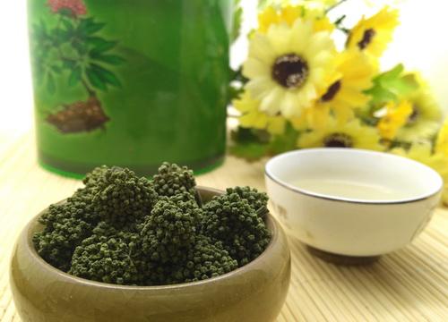 女性常吃三七绿色健康